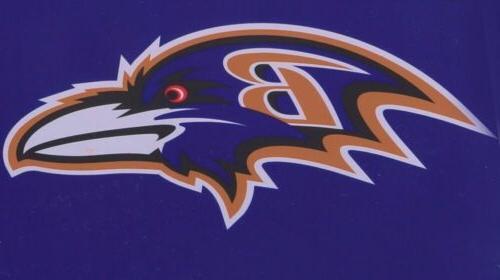 Baltimore Ravens Bowl Champions Cave